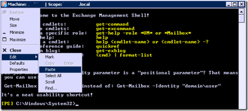 Paste the cmdlet into the PowerShell Management Shell